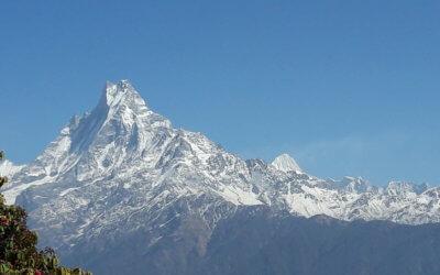 Gill in Nepal